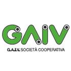 Gruppo Triveneto.com